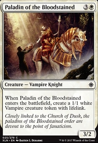 Paladin of the Bloodstained