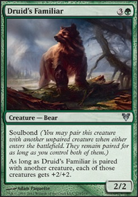Druid's Familiar