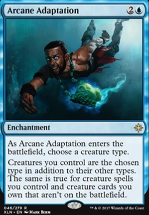 Arcane Adaptation