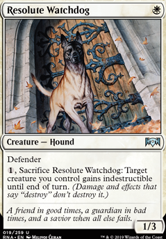 Resolute Watchdog