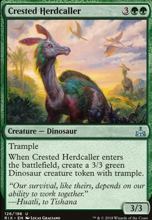 Crested Herdcaller