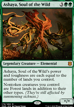 Ashaya, Soul of the Wild