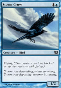 MTG Card: Storm Crow